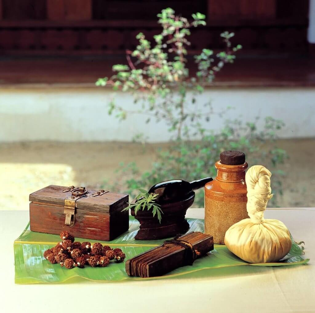 Ayurvedic industry and its needs